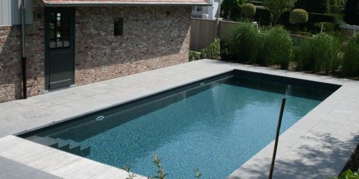 <p>skimmerzwembad in lager gelegen tuin</p>